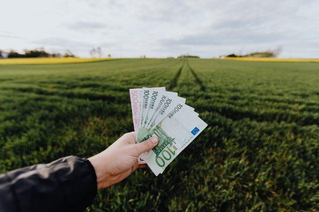 Dove investire 1000 euro